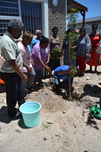 World Fisheries Day- tree planting ceremony