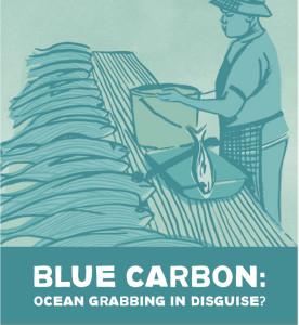 blue_carbon_report